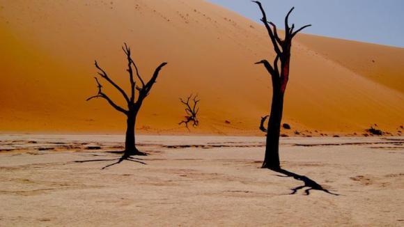 desert-720x405